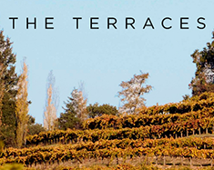 Terraces Winery